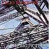 The Big Picture - CD